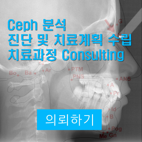 Ceph 분석 / 진단 및 치료계획 의뢰