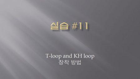 [실습 11] T-loop and KH loop 장착 하는 방법