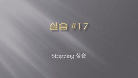 [실습 17] Stripping 실습