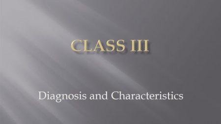 [강의 40] Seminar #16 – Class III