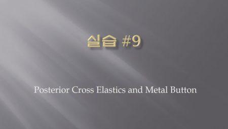 [실습 9] Posterior Cross Elastics and Metal Button