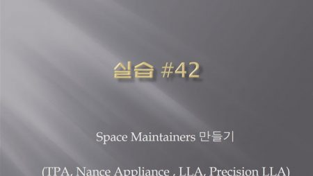 [실습 42] Space Maintainer (TPA ,LLA, Nance Appliance)