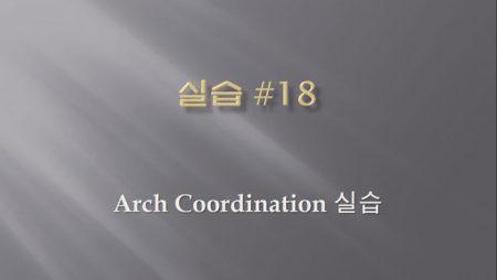 [실습 18] Arch Coordination
